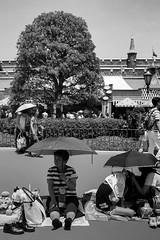 © Zoltan Papdi 2018-4554 (Papdi Zoltan Silvester) Tags: japon japan tokyo réel rue vie gens humain voyage journalisme real street life people human trip journalism paysage vue pointdevue landscape view pointofview groupe group disneylandtokyo disneyland