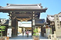 DSC_0058 (sxcxxhx) Tags: japan osaka kyoto hydrangea flower trip voyage 日本 大阪 京都 旅行