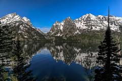 Morning Reflections at Jenny Lake, Grand Tetons (Cole Chase Photography) Tags: jennylake reflections grandtetonnationalpark wyoming