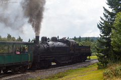 Percolate (nrvtrains) Tags: westvirginia cass logging cassscenicrailway shay steam durbin unitedstates us
