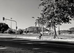 esquecer da vida... (luyunes) Tags: bike bicicleta cenaderua fotografiaderua fotoderua mobilephoto mobilephotographie streetscene streetphotography streetphoto streetshot streetlife bw motozplay luciayunes cotidiano praiadebotafogo