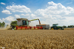 Wheat Harvest | CLAAS // JOHN DEERE (martin_king.photo) Tags: harvest harvest2018 ernte 2018harvestseason combineharvester combine harvester new modernmachine summerwork powerfull martin king photo machines strong agricultural great czechrepublic agriculturalmachinery farm working modernagriculture landwirtschaft martinkingphoto moisson machine machinery field huge big sky agriculture power dynastyphotography lukaskralphotocz day fans work place yellow gold golden eos country lens rural camera outdoors outdoor goldenhour colours landscape claaslexion