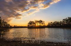 Long Pine Key Lake Sunset Wide (Photomatt28) Tags: evergladesnationalpark florida sunset unitedstates us