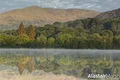Coniston at Sunrise (Alastair Marsh Photography) Tags: coniston oldman oldmanofconiston lake lakedistrict district mountain mountains hills hill trees tree forest woodland woods wood water reflection reflections sunlight sun sunshine sunrise summer cumbria dawn atmosphere atmospheric landscape landscapephotography photography countryside englishcountryside