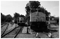 Rail Yard (Helios 1984) Tags: agfarondinax rondinax35u ilfordrapidfixer daylightloadingfilmdevelopingtank expiredfilm konicaminoltadimageiv dimageivscanner minoltascanner dimageiv topcon35l beselerl topcor44cmf2 rangefindercamera topcon tokyokogaku トプコン35l トプコン レンジファインダーカメラ フィルム ヴィンテージカメラ agfafilm agfasuperpan24 agfa superpan 200vintage film railway railroad locomotive diesellocomotive montreallocomotivework mlwm420 gmdgp9 generalmotorsdiesel