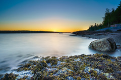 Sunset over Frenchman Bay (Tony Tavares) Tags: a7riii sunset maine acadia nationalpark colors golden water shore sea longexposure silk trees treeline seaweed slippery surface sheen sky sun shoreline goldenhour boat floating moored