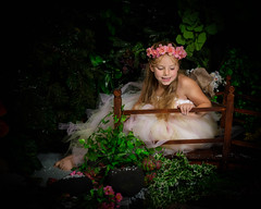 Fairy Photograpy in West Sussex