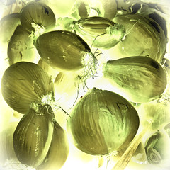 < Looking thru poltergeist onions > (Wandering Dom) Tags: farmers market onions food nature humans earth multiverse being nothingness time life reality dream impression expression poltergeist roam wandering