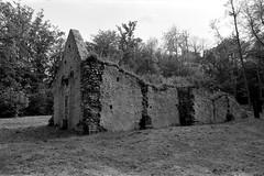 Léproserie d'Aizier (Philippe_28) Tags: aizier eure 27 normandie normandy léproserie france europe ruines ruins chapelle chapel 24x36 argentique analogue camera photography film 135 bw nb