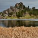 A Place I Have to Visit! (Custer State Park)