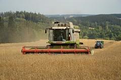 DSC_8165 (anetaležáková) Tags: summer sunset summerharvest sunnydays harvest agriculture agriphoto czechagri caseihpuma case casepuma165 caseoptum casepuma200 claas claaslexion newholland