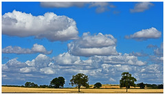 tranquility (Trev 'Big T' Hurley) Tags: warwickshire countryside fields farm farming arable sky clouds beauty simplicity earth england greatbritain