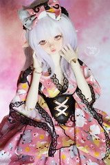 New girl - Say hi to Elwen! (~ Melody and the dolls ~) Tags: dim flowne bjd msd elf
