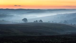 Morridge Dawn