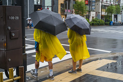 L1009552 (irenekylo) Tags: leicam10 tokyo street irenemama japan