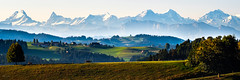 Horses in the pasture (uhu's pics) Tags: fujifilm affoltern emmental bern schweiz fuji landschaft natur himmel berge alpen hügel panorama gras berg feld pferde morgen schnee