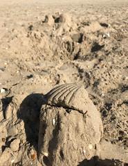 3308 Yesterdays sandcastle (Andy - Busy Bob) Tags: bbb beach ggg greatstone photostream romneysands sand sss