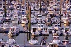 bateaux (Frank S (aka Knarfs1)) Tags: bateaux boat boot hafen harbour port france frankreich bretagne brittany breton