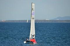 800_4843 (Lox Pix) Tags: queensland qld australia catamaran trimaran hyc humpybongyachtclub winterbash loxpix foilingcatamaran foiling bramblebay sailing race regatta woodypoint boat