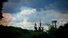 GERMANY, Himmel vor dem Regen , 76273/10210 (roba66) Tags: himmel sky clouds wolken cielo roba66 natur garten garden jardin giardini park nature naturalezza baum bäume tree trees arbes deutschland leonberg
