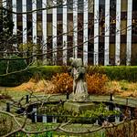 Jardin Botanique (Bruxelles) thumbnail