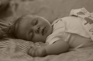 Ludvig, 3 months old.