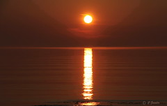 SUNSET OVER  ST. LAWRENCE RIVER  |   REFORD GARDENS   | LES JARDINS DE METIS  |  COUCHER DE SOLEIL  |   GASPESIE  |  QUEBEC   |  CANADA (C C Gosselin) Tags: sunset over st lawrence river | reford gardens gaspesie quebec canada canon 7d 7dmarkii rebel t2i canonrebelt2i eos canon7d markii rebelt2i canonrebel canont2i eost2i eos7d eos7dmarkii mark 2 mark2 eos7dmark2 canon7dmarkii ii canoneosrebelt2i canoneos7d canoneos ph:camera=canon les jardins de metis