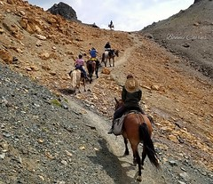 Chilcotin Ride (bonniecairns1) Tags: horse horseback adventure holiday summer mountain bonniecairns canadianlandscape sceniclandscape canada britishcolumbia