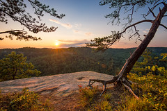 Pristine (PhotoCT1) Tags: rrg kentucky sunset pines overlook summer