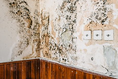 18/30 2017/08 (halagabor) Tags: urban urbex urbanexploration urbanexploring exploration exploring explorer school abandoned abandonment decay derelict devastation forgotten old lost lostplaces empty budapest hungary architect architecture building indoor