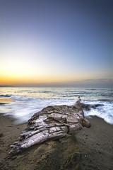Shore (josemariaruizfotografia) Tags: orilla shore sea mediterranean mediterraneo mar azul blue amanecer dawn sunset sol sun malaga andalusia andalucía españa spain water agua sielo sky sand arena