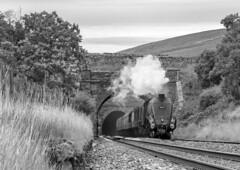 Blea Moor Streak (Kingmoor Klickr) Tags: 60009 unionofsouthafrica gresley a4 bleamoor tunnel sc settlecarlisle mainlinesteam 1z63 goldenexpress