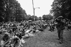 Folk Fest Audience 12