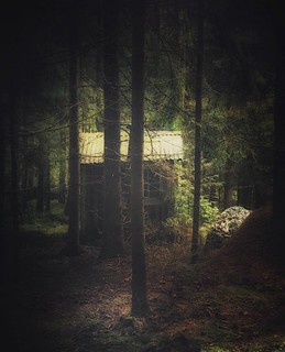 ~ deep inside the forest ~ Riddarhyttan Sweden
