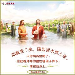 圣经金句-主耶稣受洗 (追逐晨星) Tags: 圣经金句 金句卡片 马太福音 受洗 主耶稣受洗 约翰