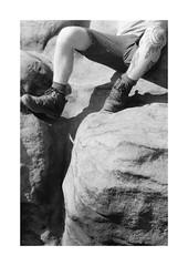 (Dennis Schnieber) Tags: 35mm kleinbild analog film black white fujica st801 ilford delta 400 sächsische schweiz