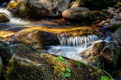 Un dimanche au frais (S@ndrine Néel) Tags: forez valléedechorsin montbrison loire auvergnerhônealpes rivière river neelsandrine