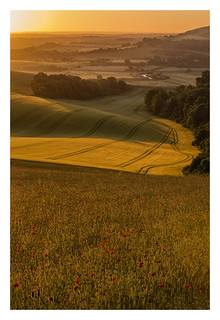 Bury Hill- South Downs Sunrise-1.jpg