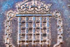 Penny portcullis (Wendy G Davies) Tags: portcullis 7dwf macromondays linesymmetry copper metal tails penny coin 28mmf28 pentaxm reverselens macro