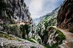 Picos de Europa, Spain (JSTAR377) Tags: outdoors hiking fitness mountains hike trek trekking walks trails sky outside getoutside spain travel explore espana peaks adventure landscape
