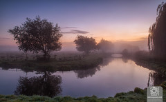 Auroral Dawn (Syxaxisphoto) Tags: hertford hertfordshire syxaxisphotography cloudsky color colour dawn fog horizontal lake landscape marsh morning nature nopeople outdoor reflection riverbank sky tranquilscene tranquility tree uk water weather wwwsyxaxiscom