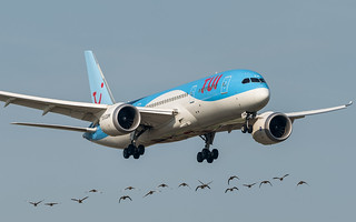 Tui Airlines Netherlands PH-TFM pmb20-07562
