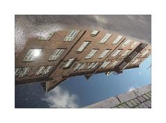 Upside down (Franco & Lia) Tags: copenhagen copenaghen københavn denmark danimarca pozzanghera riflessi sottosopra upsidedown reflections puddle
