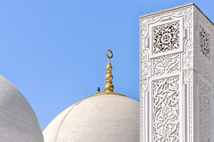 Immaculé - Without spots (Docaron) Tags: emirats emirates abudhabi aboudabi aboudhabi aboûdabî أبوظبي mosquée mosque architecture islam sheikhzayed dôme dome marbre marble blanc white dominiquecaron uae szgm