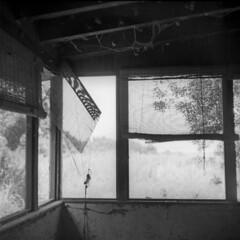 Sunless Sunroom (macromary) Tags: mamiyac220 mamiya tlr twinlensreflex manual mechanicalcamera mediumformat monotone bw blackandwhite blackwhite 120film 120 vintagecamera vintagelens palmbeachcounty florida portmayaca abandoned abandonedhouse sunroom urbex flurbex decay