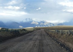 on the road before sunset in Valle Sagrado Peru (roli_b) Tags: cactus kaktus road ontheroad street valle sagrado vallesagrado sacred valley sacredvalley mountains berg montañas before sunset sol landscape nature coche auto car light beautiful magic moments