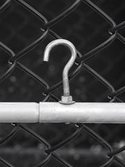 Fence? [Explore-2018-08-10] (Gazman_AU) Tags: fencefriday fence hff chainlink wire plastic coated