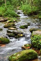 Bunches Creek (esywlkr) Tags: bunchescreek flatcreektrail gsmnp smokies greatsmokymountainsnationalpark nc nature rocks water outdoors northcarolina