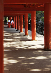 (cherco) Tags: japan japon temple templo woman mujer girs orange naranja shadow sombras repetition repeticion columnas composition composicion canon colour tree vanishingpoint white torii