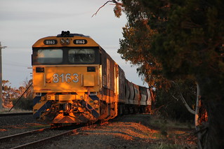 8163 and BL30 bask in the last of the Winter light in Dimboola yard